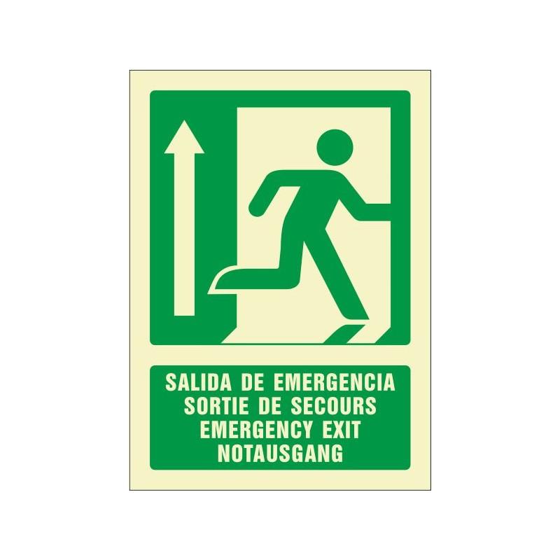 5083F-Señal Salida de emergencia arriba (cuatro idiomas) Fotoluminiscente - Referencia 5083F