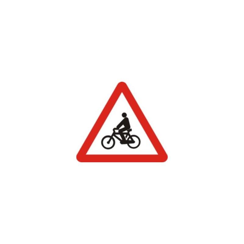 P22-Ciclistas