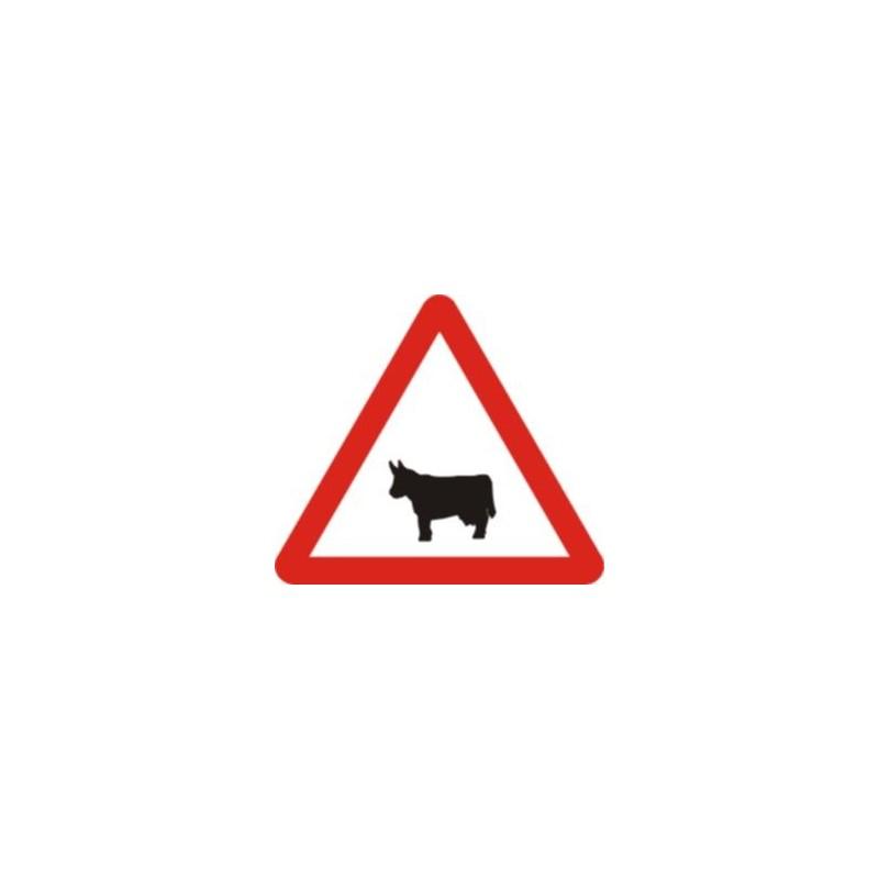 P23-Pas d'animals domèstics