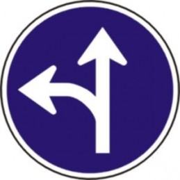 Únicas direcciones permitidas
