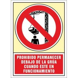 Prohibido permanecer debajo grua