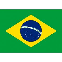 SYSSA - Tienda Online- Bandera de Brasil